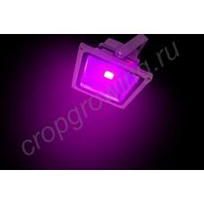 """Прожектор фитосветодиодный для растений """"Этамин"""" 30Вт"""