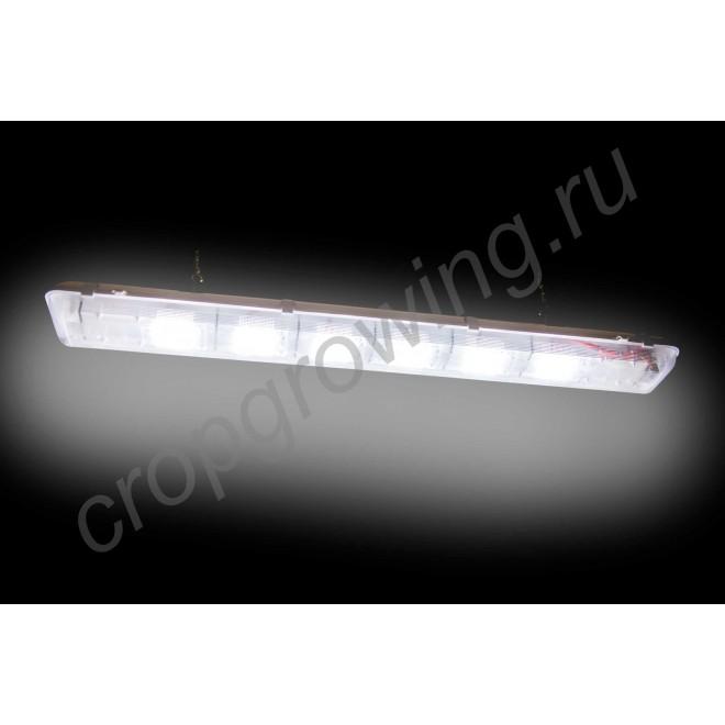 """Светодиодный тепличный светильник с выдающимися показателями """"Шаула"""" 300Вт  IP54 с потолочным креплением"""